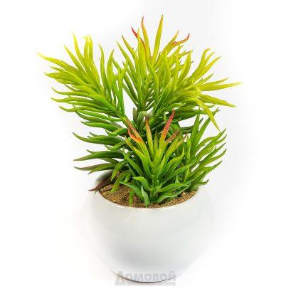 Купить Растение искусственное Суккулент Молочай