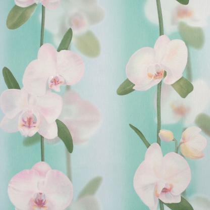 """Купить Обои (горячее тиснение на ф/о) Elysium E17600 """"Орхидеи"""" (рисунок 1-2) гол. 1"""