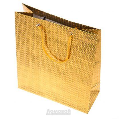 Купить Пакет подарочный голографический 21