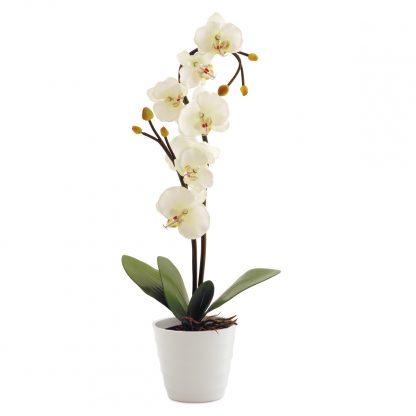 Купить Cветильник декоративный СТАРТ LED Орхидея белая в Санкт-Петербурге по недорогой цене и с быстрой доставкой.