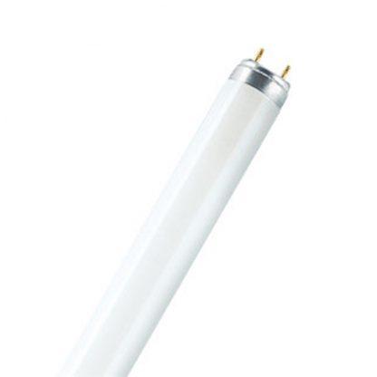 Купить Лампа люминесцентная Osram L36W/640 CW в Санкт-Петербурге по недорогой цене и с быстрой доставкой.