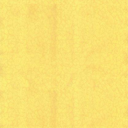 Купить Обои Гомельобои (бумажные дуплекс) Голландия 6091-52(фон 2-2) желт 0