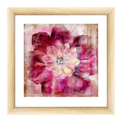 Купить Картина натур - постер в раме Цветок