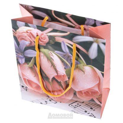 Купить Пакет подарочный бумажный 14x20x8см в Санкт-Петербурге по недорогой цене и с быстрой доставкой.