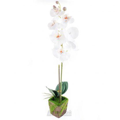 Купить Растение искусственное Орхидея