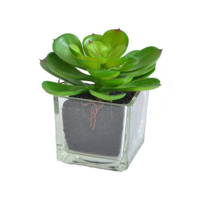 Купить Растение искусственное Суккулент Эхеверия